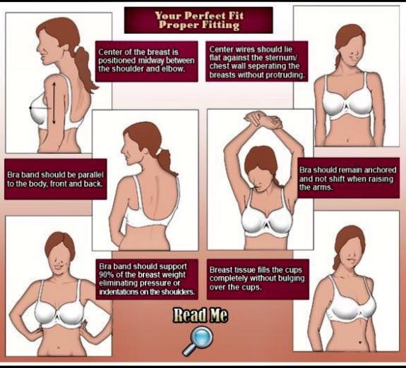 Bras fit guide